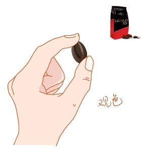 巧克力如何品鉴?法芙娜巧克力品鉴指南