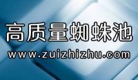 SEO网站优化技巧整合